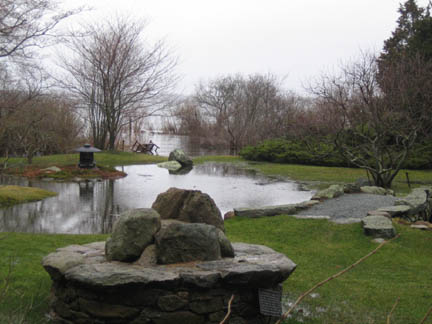 the pond at high tide