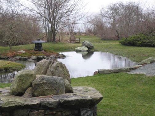 water garden 4-18-07