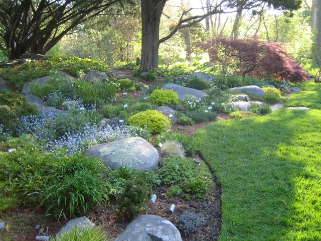 The Rock Garden 5-14-07
