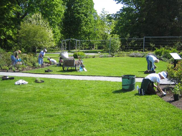 Planting the Rose Garden 5-24-07