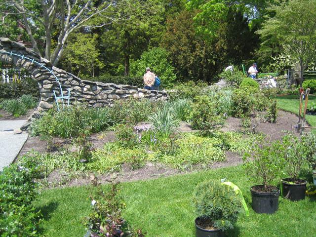Rose Garden - before -