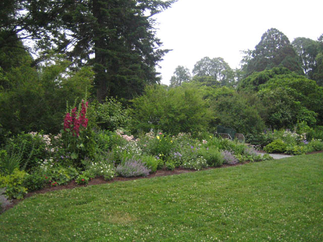 The North Garden after deadheading
