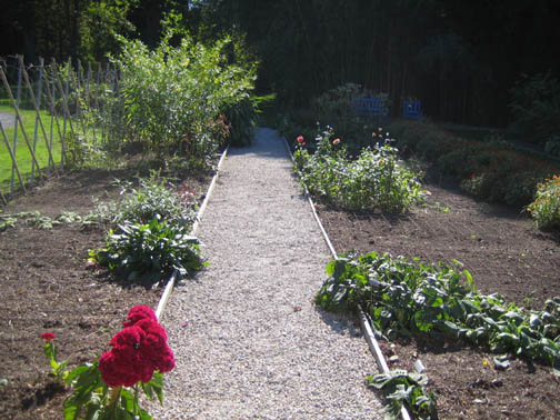 Empty Cutting Beds - ready for tulips