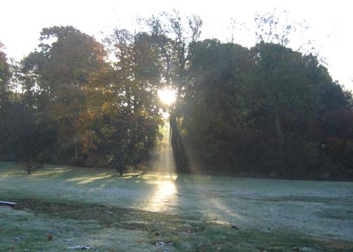 Mid November light
