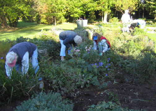 The Deadheads cleaning up the North Garden