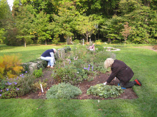 The Rockettes plant 600 tulips in the North Garden
