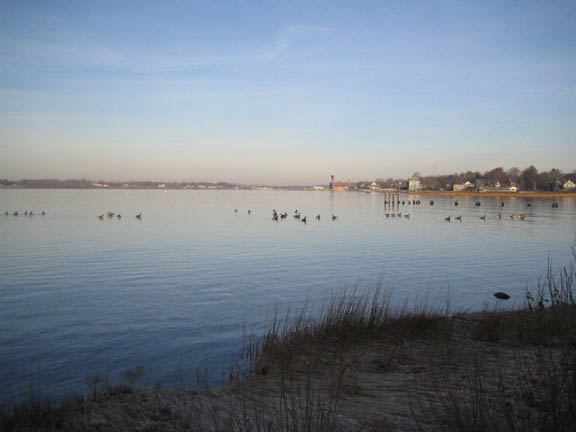 Bristol harbor 12-11-07