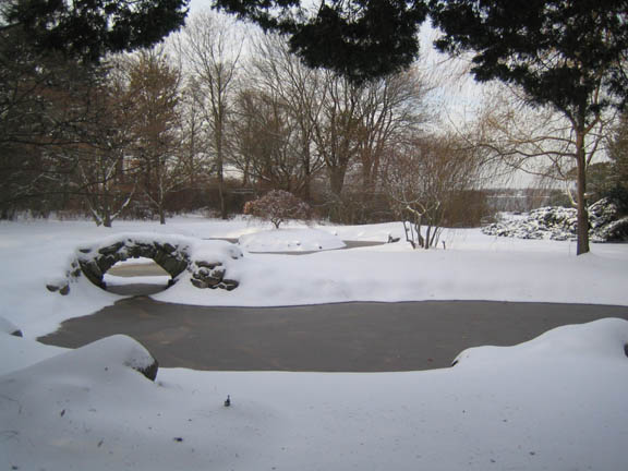 The pond perfect this morning