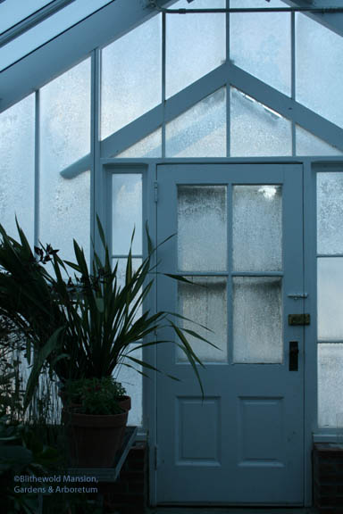 ice darkened greenhouse
