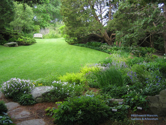 The Rock Garden in spring