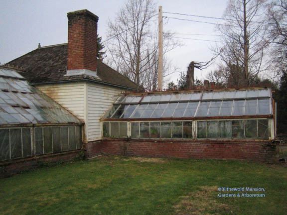 the greenhouse - before restoration.  Propagation house on the right.