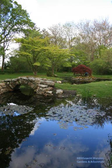 The Water Garden 5-20-08