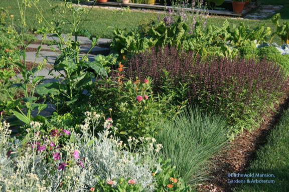 a garden mix
