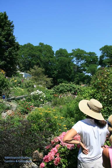 gazing at Nick's hillside garden