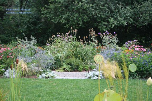 The Ellipse Garden - before