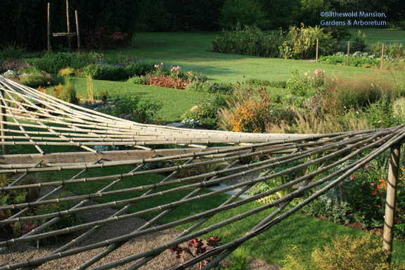 The Container Bed bamboo arbor looks a little like a web from above…