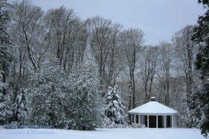 The Summerhouse - January