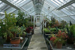 Plenty of greenhouse space 2-18-09