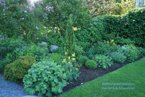 North Garden May Gap