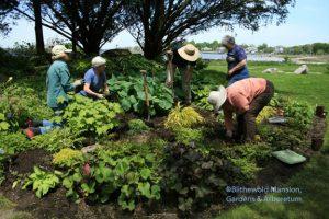 Rock Garden wet slope redo phase 2 - all hands for planting