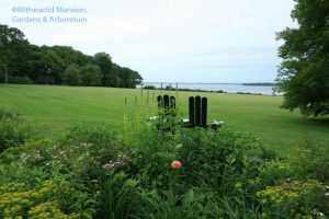 a Great Lawn view