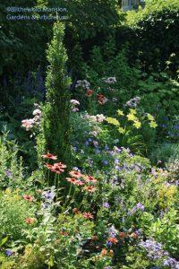 North Garden 7-17-09