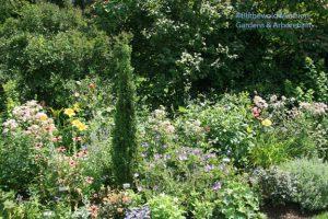 A North Garden bed, Rudbeckia-free