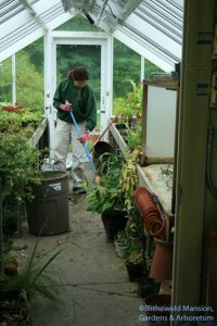 Gail cleaning out the propagation house