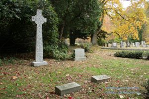 The McKee family plot