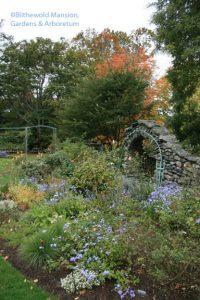 The Rose Garden on October 15, 2009