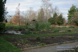boneless Display Garden