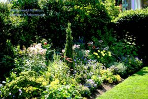 a North Garden bed posterized (mid-July)