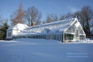 Sliding snow on the greenhouse