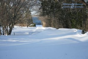 snow drifts on the lane