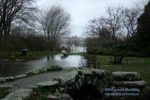 pond and bay flood, 12-3-09