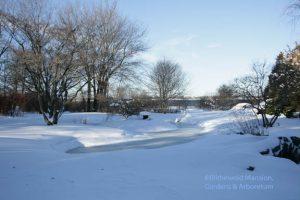 Water Garden snow globe