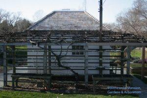 winter pumphouse and grape arbor