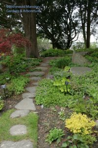 Rock Garden path c. April 28, 2010