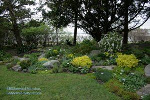 Rock garden before editing, 4-27-10