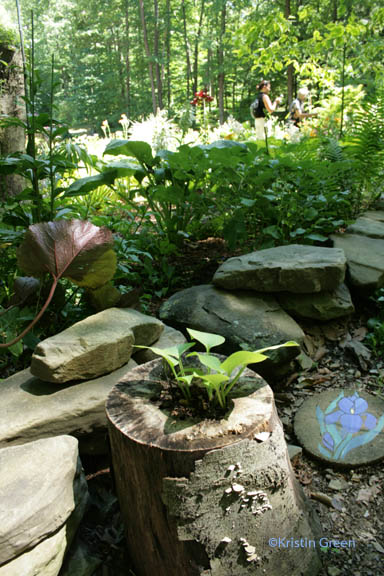 Shadrack terrace garden