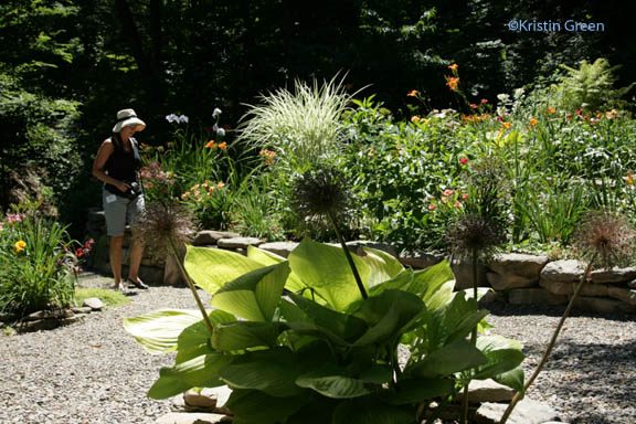 strolling the Shadrack terrace garden