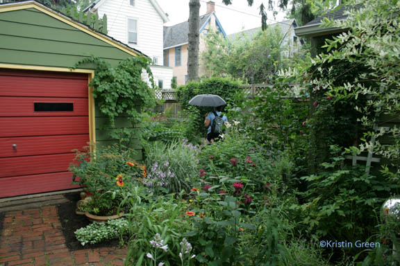 Cottage district garden in the rain (beehives on the garage roof!)
