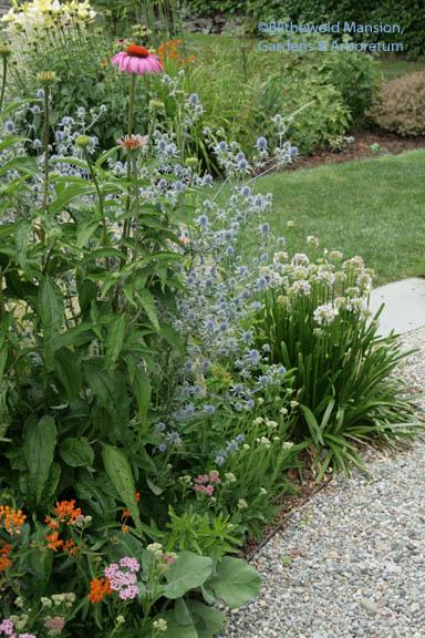 herb garden combo