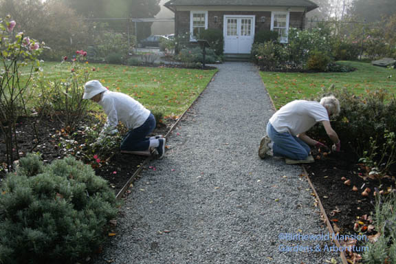 Mary and Pat back to back in the Rose Garden - that was easy digging!