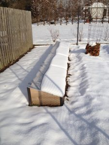 Snow on Cold Frames