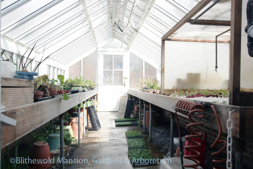 The propagation house sparkles