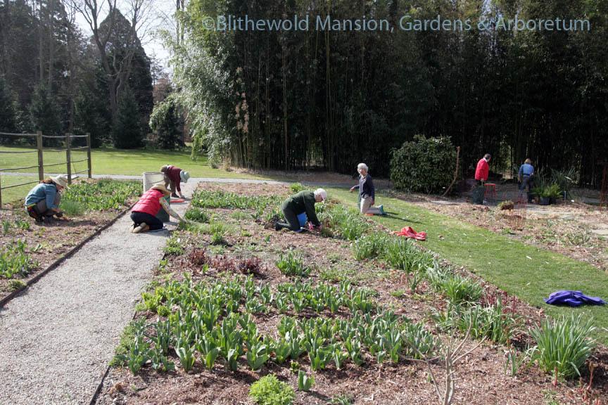 Editing the Cutting Garden