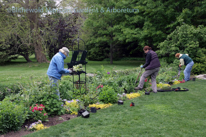 The Rockettes planting the North Garden 5-28-14
