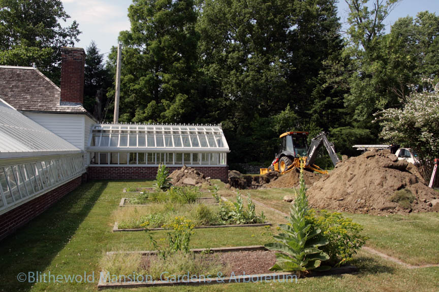 the big dig for Blithewold's new plant house