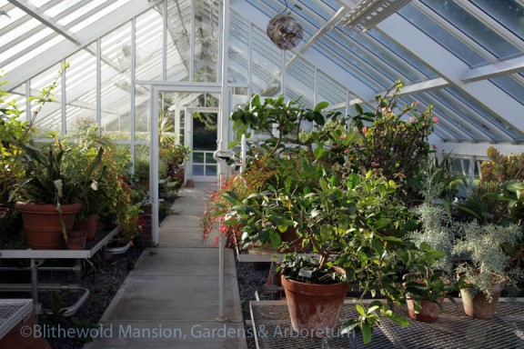 The greenhouse is filling back up again